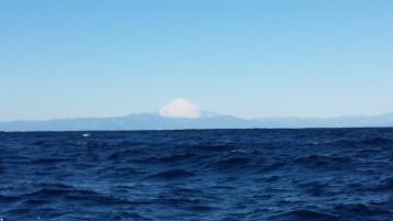 海からの富士山