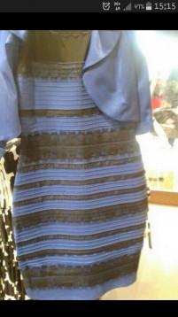 何色に見えますか?(今、話題になっていますね)